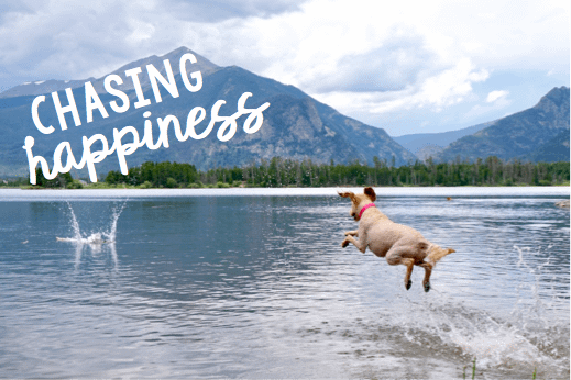 Chasing Happiness – Just Keep Your Eyes Open!