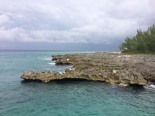 rock and reef in grand cayman