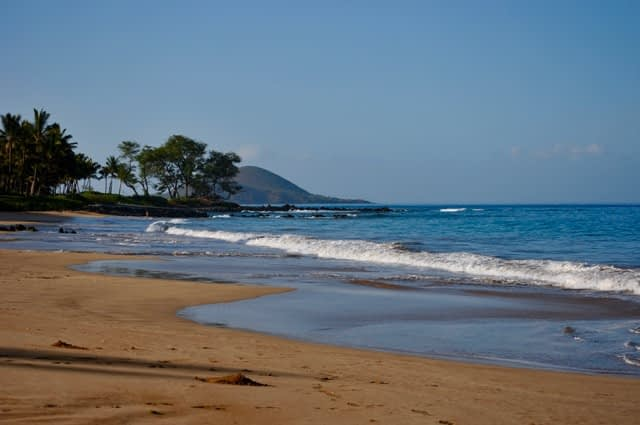 Fun for the Whole Family in Maui Hawaii